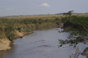Mara Fluss