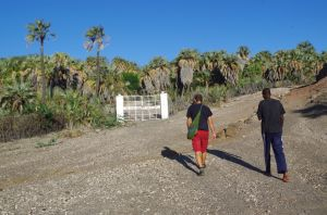 El Molo Camp in Loyangalani